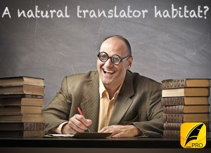 Textkraft is the perfect tool for translators